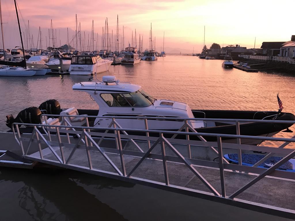 38' Protector Tauranga 38? RIB - Yacht Fishing Patrol  Tender For Sale