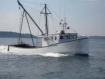 37' Novi Lobster Dragger