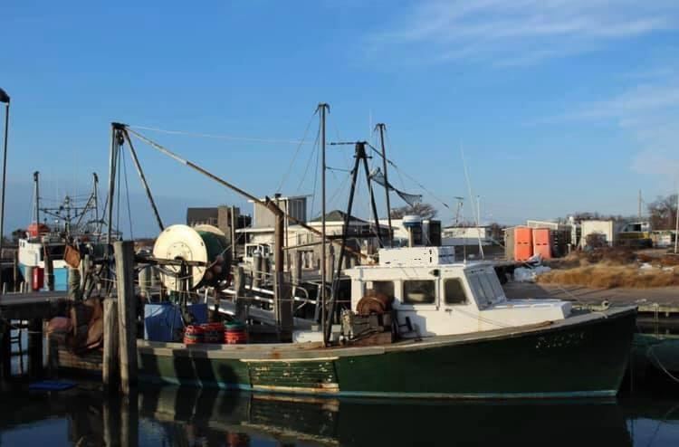 42' Bruno Stillman Dragger Fishing Vessel For Sale