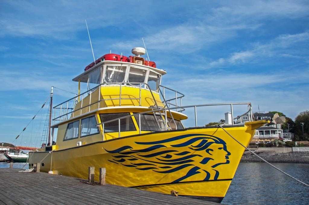 48' Marine Management Passenger Cargo Ferry For Sale