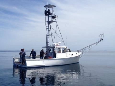 35' Duffy Lobster Boat Sportfish For Sale $93,500.